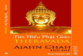 Việt Nam Phật Giáo Sử Luận - Tập I