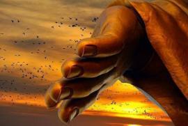 Niệm Phật phải đặt trọn lòng tin vào lời Phật dạy