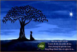 Tuổi trẻ và nhân duyên cửa Phật