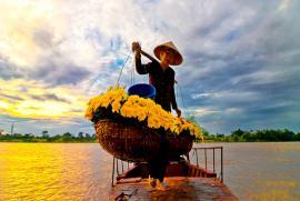 Phân biệt Hoa Sa La, hoa Vô Ưu và hoa Ngọc Kỳ Lân