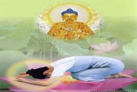 Phật tử tu theo pháp môn Tịnh độ có nên đeo, thỉnh hoặc thờ các Pháp khí Mật tông không?
