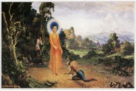 Hương sen đất Việt