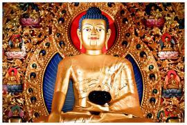 Mỗi người trong chúng ta là một vị y sĩ: Đức Phật Dược Sư và Nghiệp chữa bệnh
