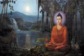 Hoàn thiện cuộc sống nhờ Phật pháp