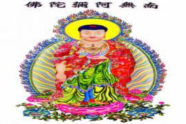Chúng ta đi Chùa là để cầu xin hay Tu theo Phật