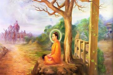 Đức Phật & cội cây quê nhà