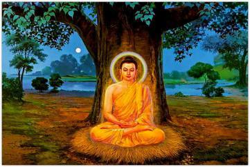 Phật Học Phổ Thông - Khóa VIII: Kinh Viên Giác
