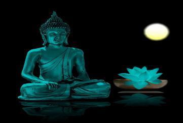 Ý nghĩa của trí tuệ trong Phật giáo (Trích Phật Học Từ Quang Tập 2,3, 4)