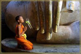Tụng Kinh - Trì Chú - Niệm Phật