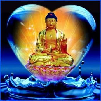 Kết quả hình ảnh cho Niệm Phật Phải Ðặt Trọn Lòng Tin Vào Lời Phật Dạy