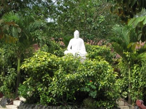Kết quả hình ảnh cho Thiền quán. Truyền thống tu tập Thiền tứ niệm xứ