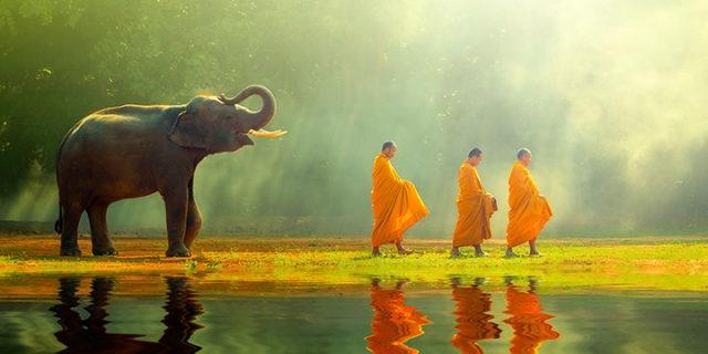 cách sống hiểu ra từ đức Phật