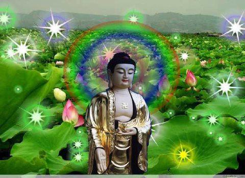 Chư Phật Có Hiểu Và Tiếp Dẫn Nếu Niệm Phật Bằng Ngôn Ngữ Khác Nhau?