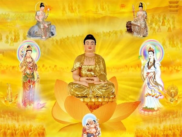 Con Đường Tu Tập Của Bồ Tát Như Thế Nào? Phật Hay Bồ Tát Nào Là Cao Nhất?