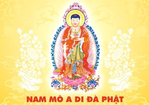 Đức Phật Và Hành Giả Vãng Sanh Tịnh Độ Có Hình Tướng Như Thế Nào?