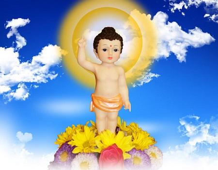 Đức Phật Đã Giác Ngộ Có Còn Bị Chi Phối Bởi Quy Luật Nhân Quả Không?