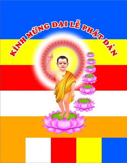 Tại Sao Đức Phật Đản Sanh Lại Đi Trên Hoa Sen? Ý Nghĩa Nụ Cười Của Ngài Ca Diếp