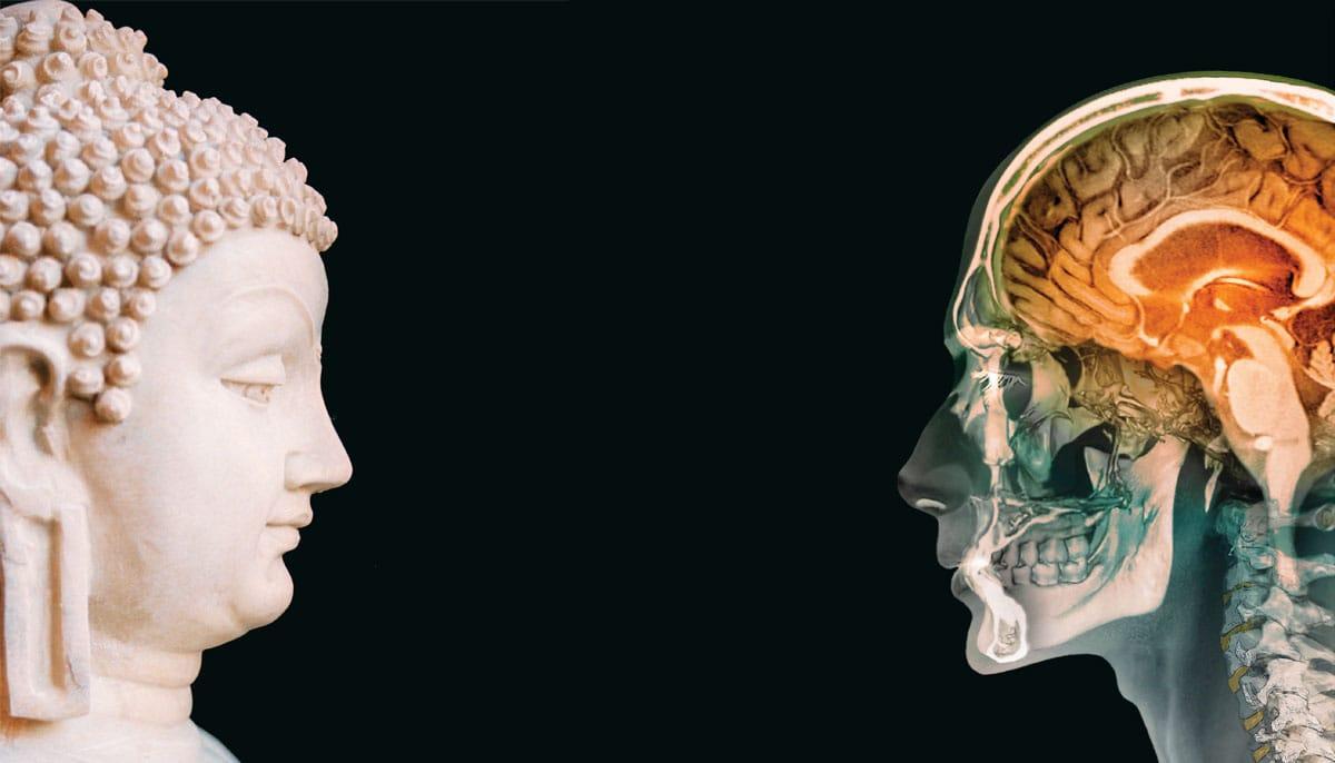 Kết quả hình ảnh cho Vài khía cạnh trong thế giới quan Khoa học và Phật học