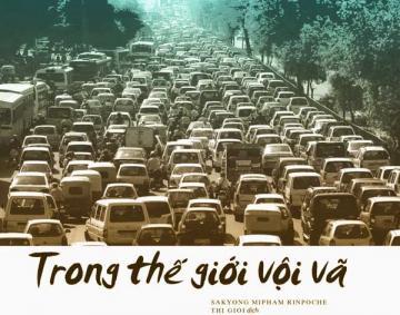trong_the_gioi_voi_va