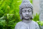 Suy ngẫm về Chánh ngữ - Trương Hoàng Minh