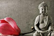 Phật dạy về pháp lãnh đạo - Phan Minh Đức