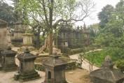 Thiền tông là cội gốc của đạo Phật - HT. Thích Thanh Từ