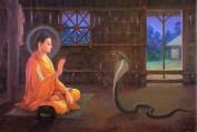 Kệ trừ rắn độc - Quảng Tánh